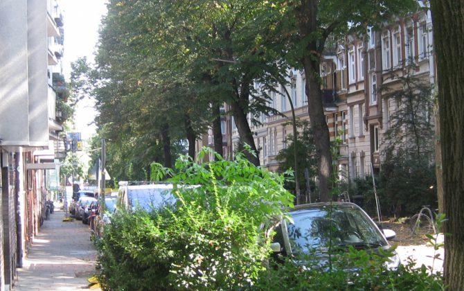 Blick in die begrünte Wohnstraße